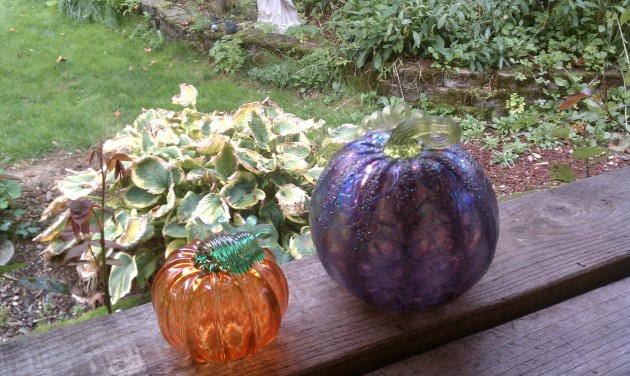 Glass Pumpkins from Orcas Island